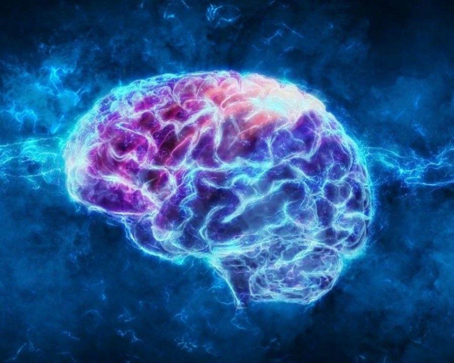 چرا فکر میکنیم مغز زنان و مردان با هم فرق دارد؟