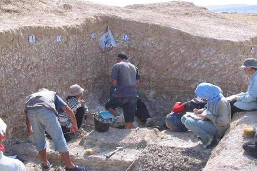 اکتشاف تاریخی بزرگ در الجزایر