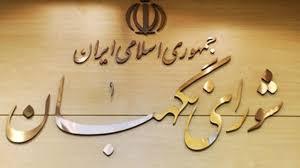 اکثر مغایرتهای مصوبه مجلس درباره الحاق ایران به CFT برطرف نشده است