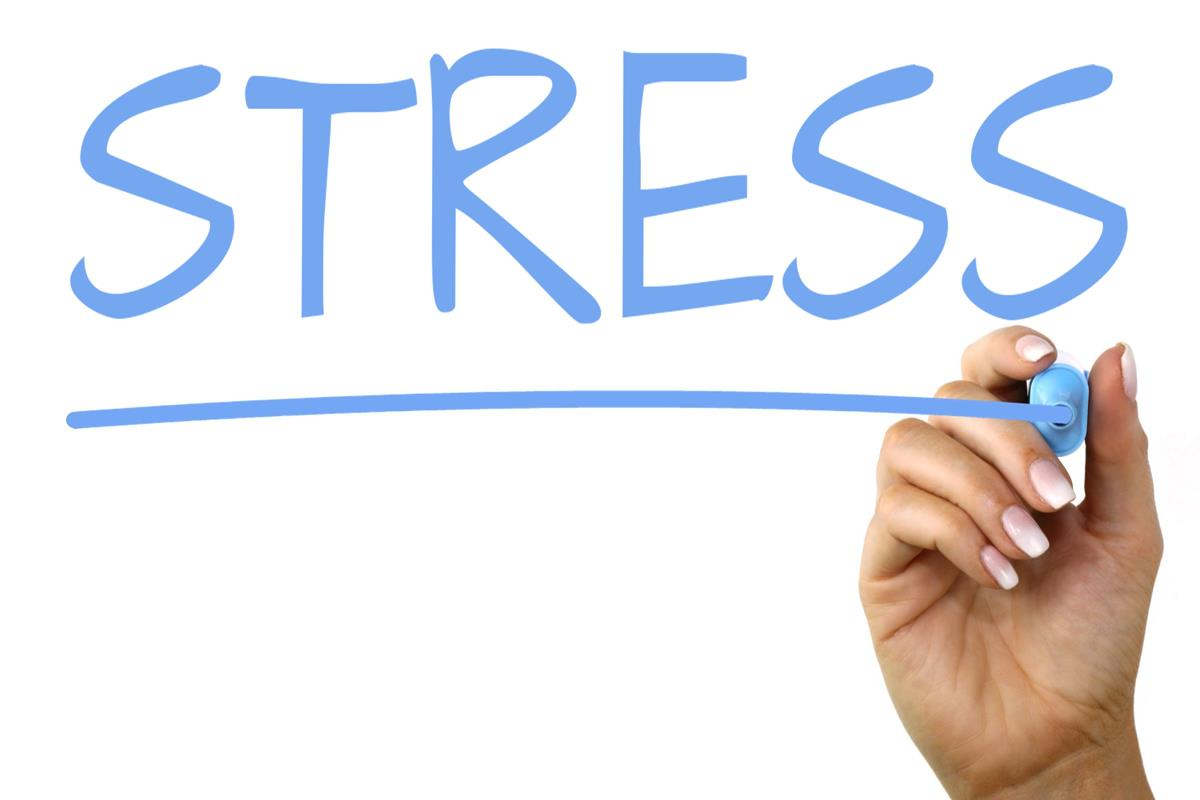 چگونه بدون استرس زندگی کنیم؟ (قسمت 1)