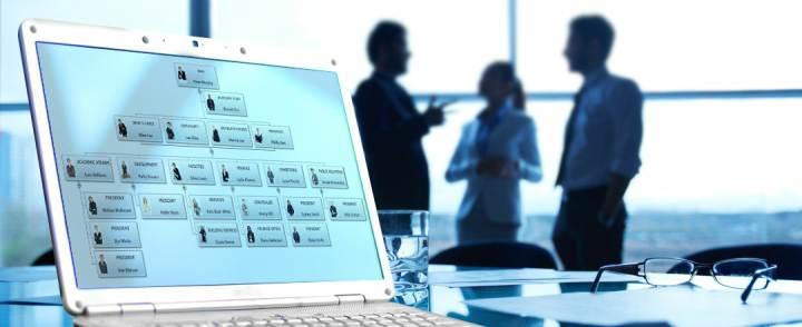 ساختار سازمانی چیست ؟ / انواع ساختار سازمانی