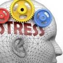 استرس   ذهن و پردازش اخبار بد
