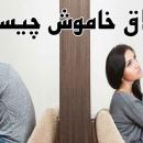 طلاق خاموش یا طلاق عاطفی چیست؟