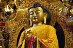 بودا و معرفت بودایی