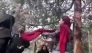 بازرسی پلیس تهران درحال بررسی فیلم ضرب و شتم یک دختر جوان توسط ماموران گشت ارشاد است