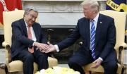 دبیر کل سازمان ملل با ترامپ دیدار کرد
