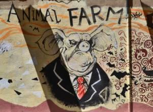 قلعه حیوانات | جوروج اورول | چرا باید قلعه حیوانات را بخوانیم؟