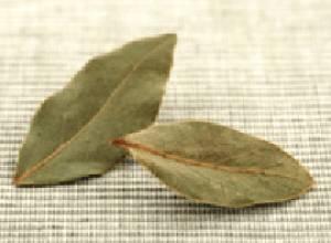 تنظیم قندخون با مصرف برگ بو