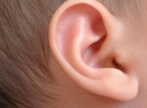 بیماری های گوش و سیستم تعادلی بدن (قسمت 1)