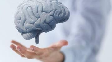 40 راهکار بالندگی ذهنی و ارتقای مغز