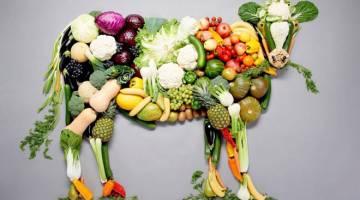 وگان یا وجترین | کدام رژیم غذایی سالم تر است؟